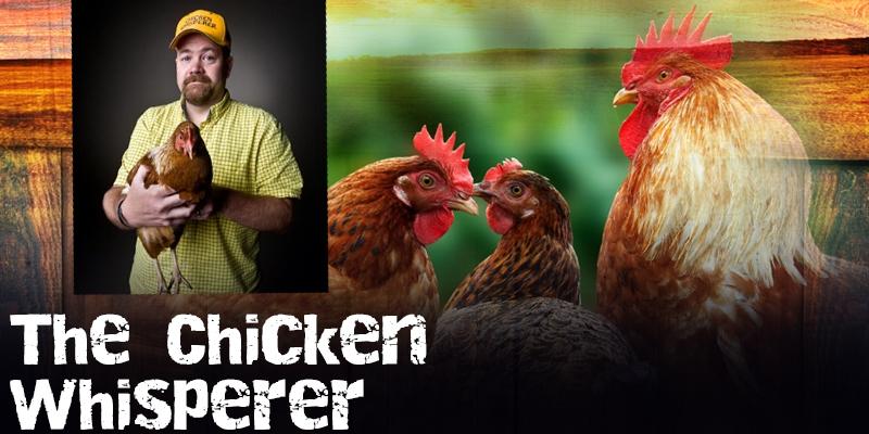 foto-chicken